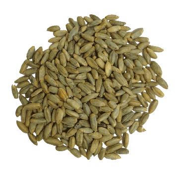 Rye Grain 100% organic
