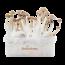 Mexican XP | Fresh Magic Mushrooms Grow Kit