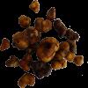 Photo Psilocybe Atlantis Magic Truffles | 15 grams
